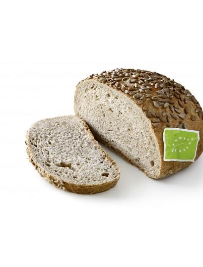 Pan ecológico de pipas de girasol